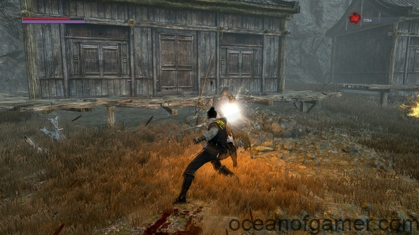 bloody spell pc game